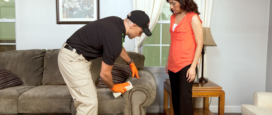 Napa, CA carpet upholstery cleaning